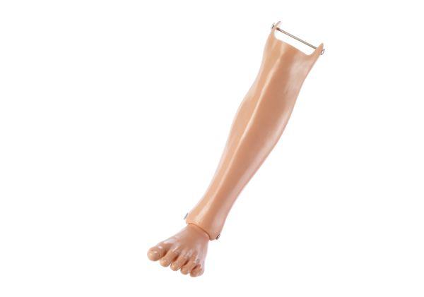 Unterschenkel mit Fuß, links